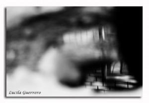 viequotidienne-92-320-px