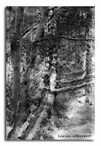 naturemono-50-320-px