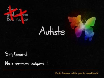 autiste-Haut-Bas-niveau