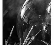 Reflet sur la bulle